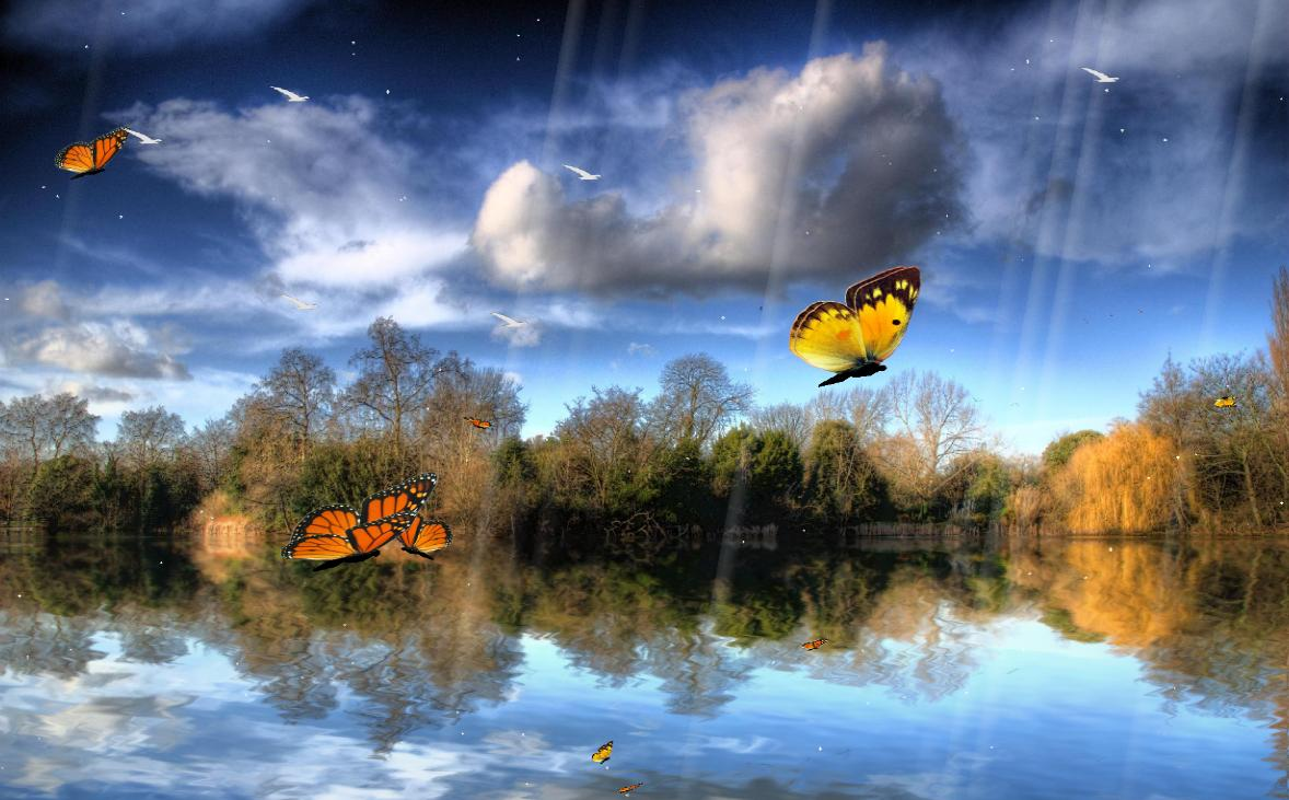 Click to view Butterfly Lake Screensaver 1.0 screenshot