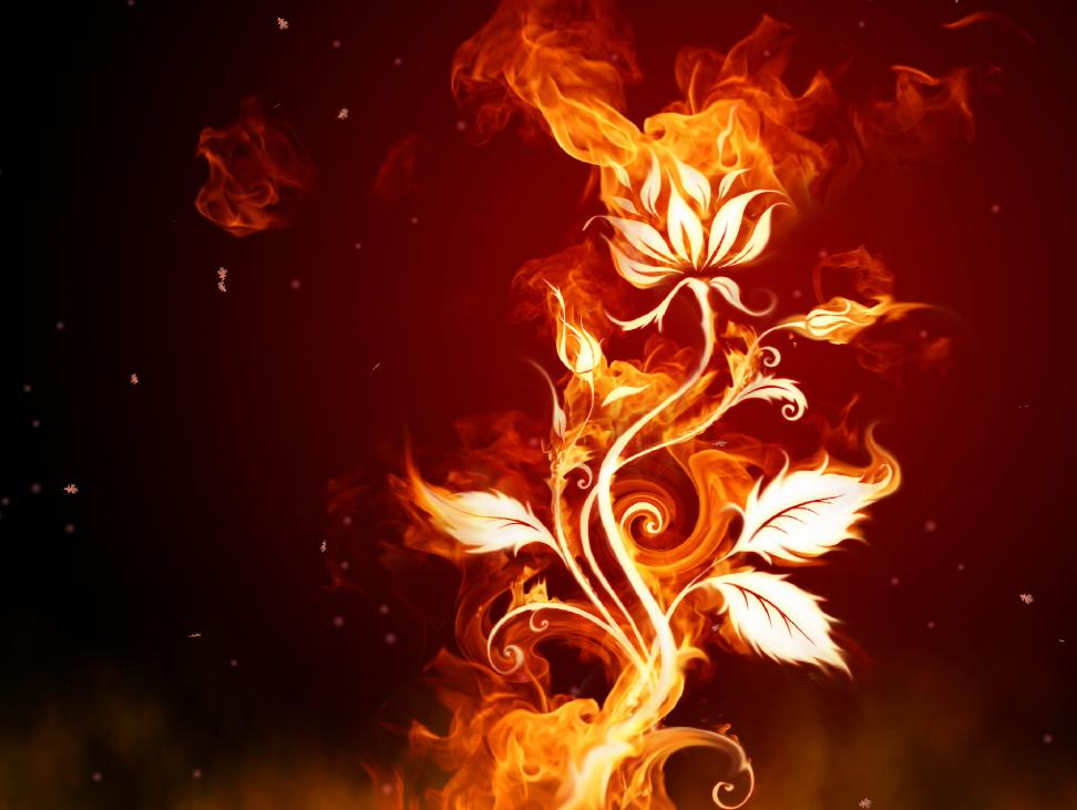 Fantastic Fire Screensaver
