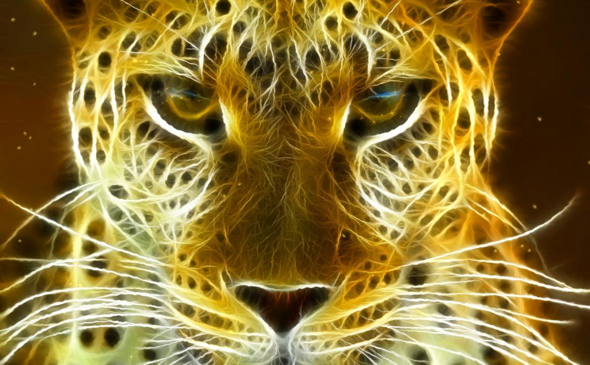Wild Felines Screensaver full screenshot