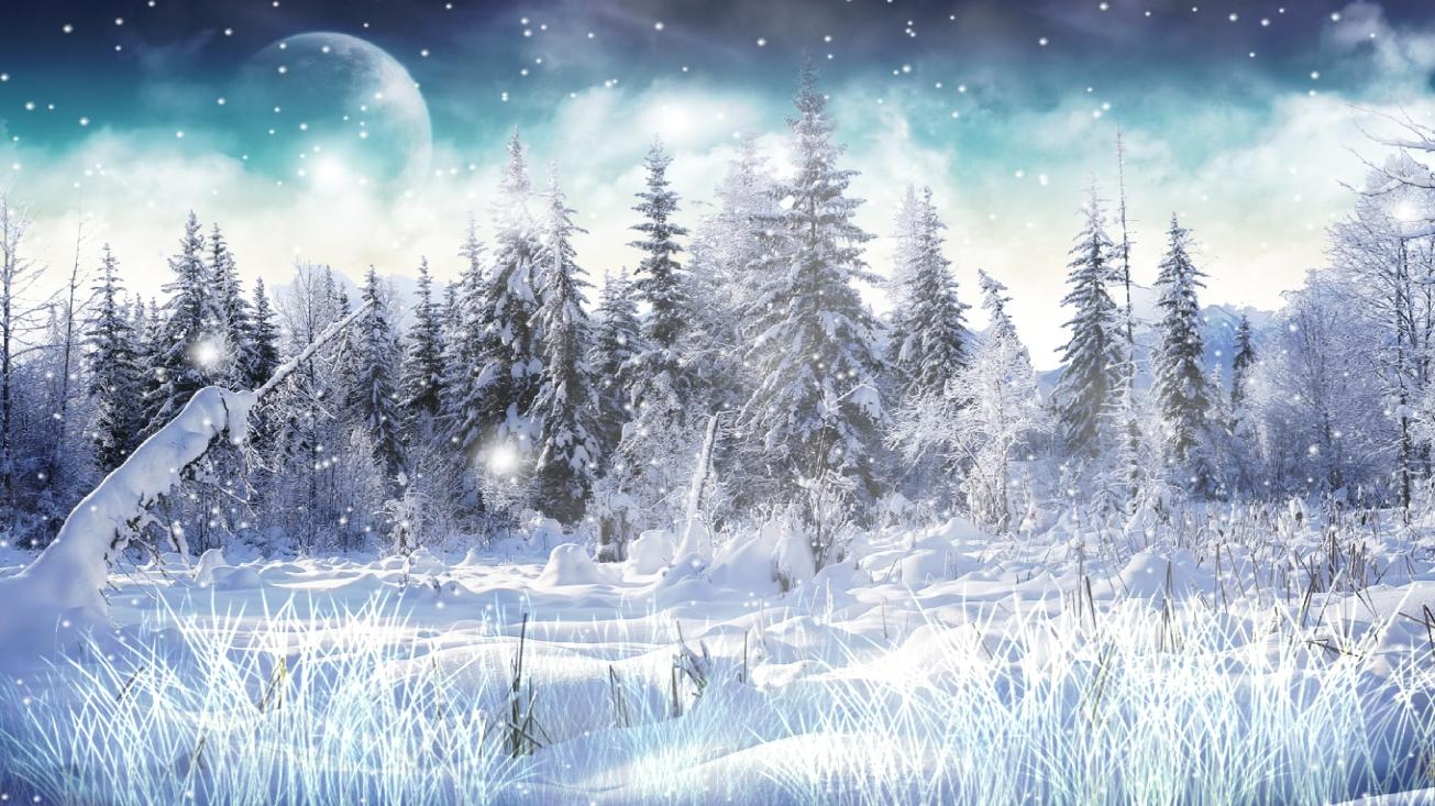 Winter Snow Screensaver 1.0