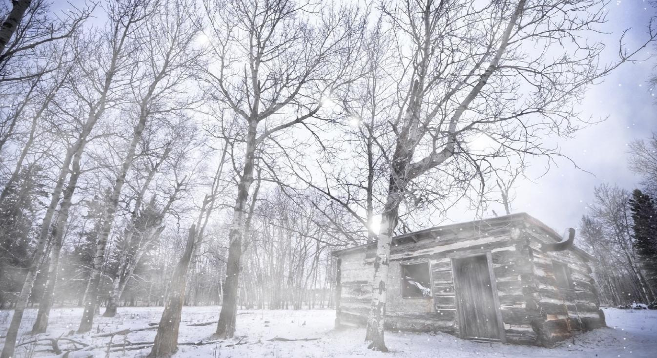 fantastic and realistic winter snow screensaver feel the wind and the ...