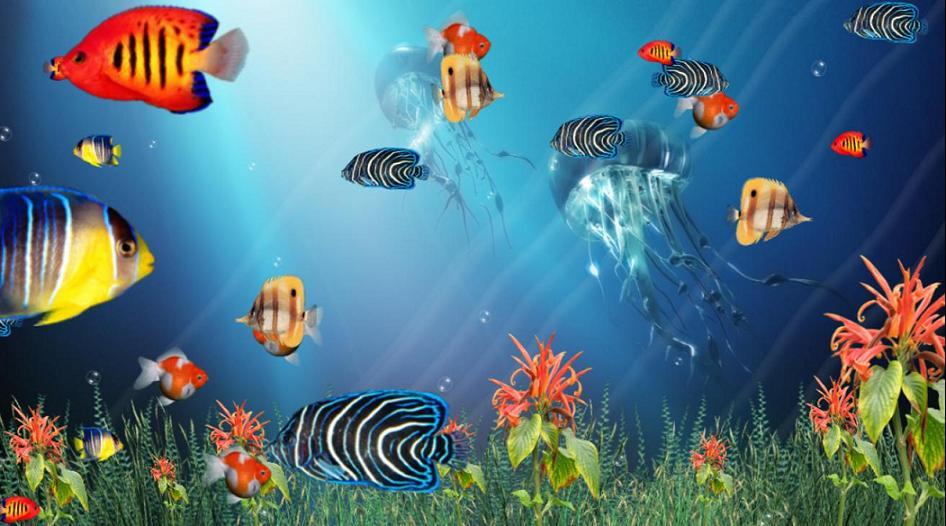 Aquarium 3D Screensaver  Tropical Aquarium Wallpaper