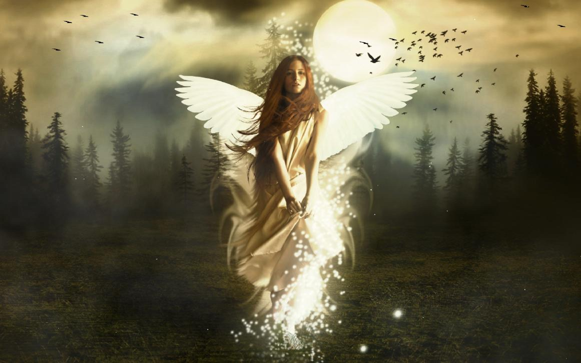 angel wallpapers for laptops - photo #40