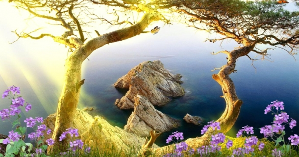 Beautiful Landscape Screensaver