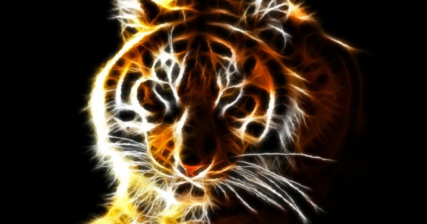 Fantastic Felines Screensaver