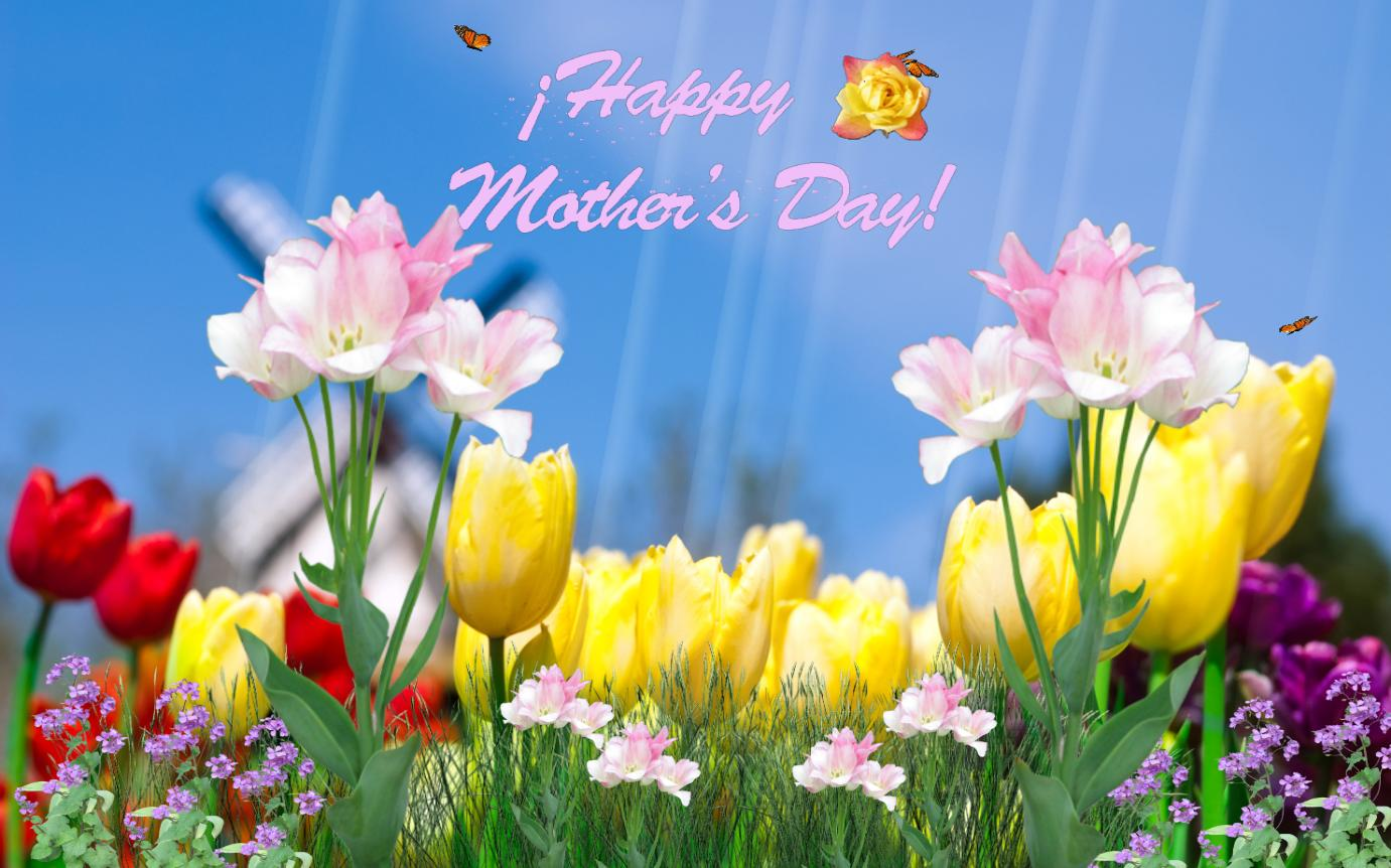 Download Happy Mothers Day Screensaver