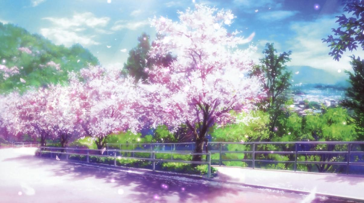 Cherry Blossoms Screensaver Screensavergift Com